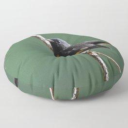 A Male American Redstart Floor Pillow