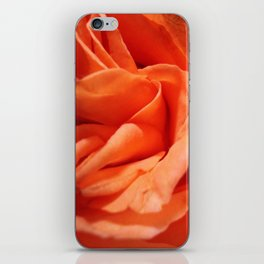 Rosa Vieja iPhone Skin