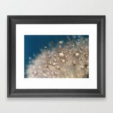 Blowball Blue Framed Art Print