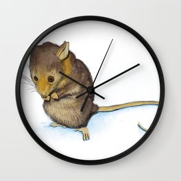 Mountain Pygmy-possum (Burramys parvus) Australian Native Wall Clock