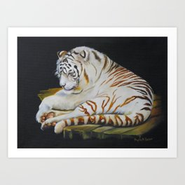 White Tiger Sleeping Art Print