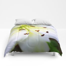 White Easter Lily Close Up Comforters