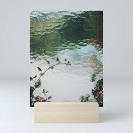 Flowers Behind Glass. Window Textures. 35mm Analogue Film Photography. Moody Nature Fine Art Print. Travel Wall Art. Mini Art Print