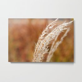 Fall Wind Metal Print
