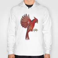 cardinal Hoodies featuring Cardinal by Jody Edwards Art