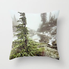 Winter forest in BC Throw Pillow