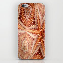 Urchin Mosaic iPhone Skin