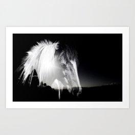 Horse Black And White Landscape Art Print