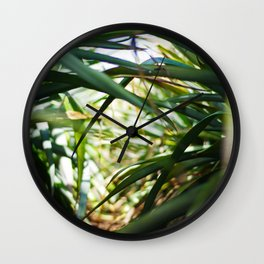 Sunlight in plantation  Wall Clock
