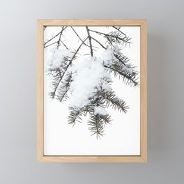 Snowy Spruce Needles 6 Framed Mini Art Print