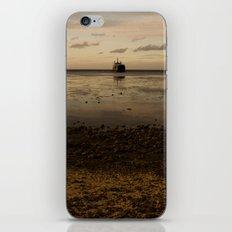 Tropic Rust iPhone & iPod Skin