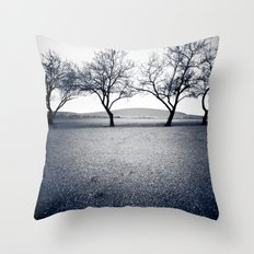bruneau sand dunes. Throw Pillow