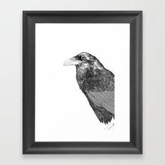 Corvus Corax Framed Art Print