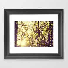 Dapple Framed Art Print
