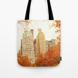 Autumn - Central Park - Fall Foliage - New York City Tote Bag