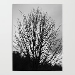Deadly monochromatic tree Poster