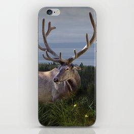 Elk or Wapiti Photographic Nature Portrait iPhone Skin