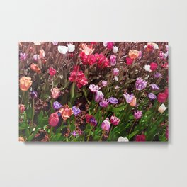 Magnificent Field Of Tulips Metal Print