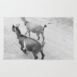 pet goats Rug
