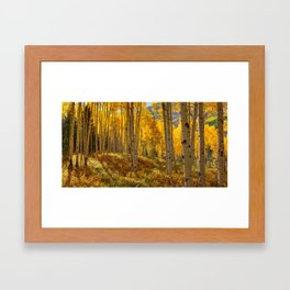 Autumn Aspen Forest Aspen Colorado Framed Art Print
