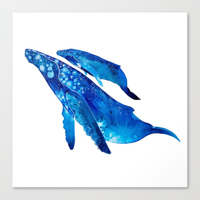 Humpback Whale Mother and Calf Canvas Print