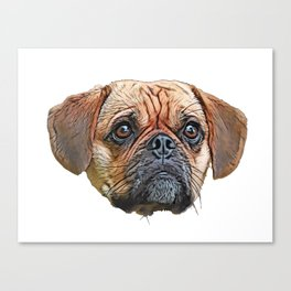 Puggle Beagle Pug designer breeders aim healthy companion Canvas Print