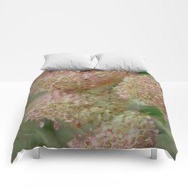 Hydrangeas in the Fall Comforters