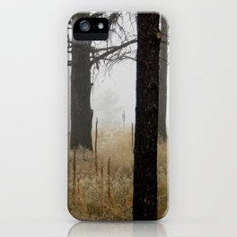Canyon Mist iPhone Case