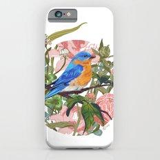 Blue bird iPhone 6s Slim Case