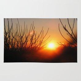 Spanish Sunrise Rug