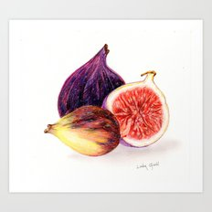 Figs Print Art Print