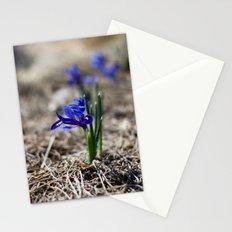 Mini Iris Stationery Cards