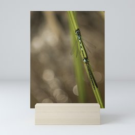 Two Damselflies Mini Art Print