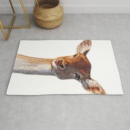 Deer Face Developed Horns Stuffed Mammal Freezed Male Rug