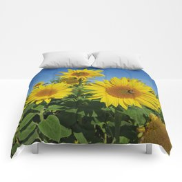 Large sunflower against blue sky in summer Comforters