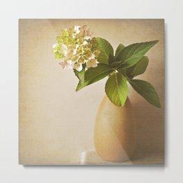 Pale pink Hydrangea flowers in textured vase. Metal Print