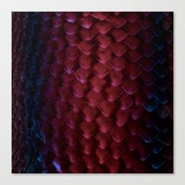 Drogon Skin Canvas Print