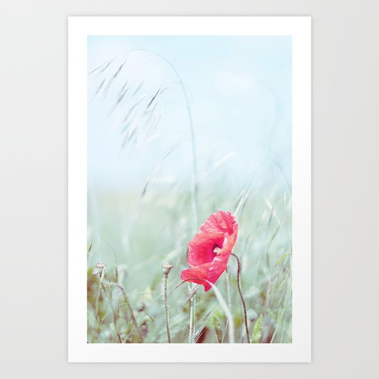 Thoughtful Poppy Art Print
