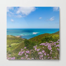 Moa Point, New Zealand Views Metal Print