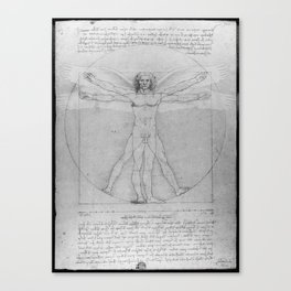 Leonardo da Vinci Vitruvian Man with Wings Study of Angels Canvas Print