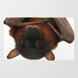 Little Red Flying Fox Hanging Out Rug