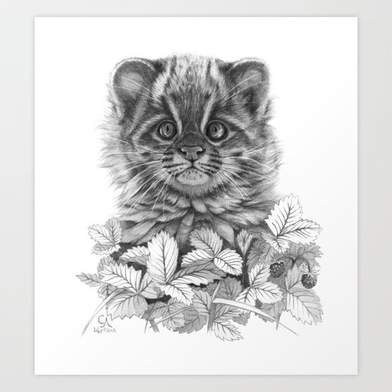 Asian Leopard Cat Cub G096 Art Print