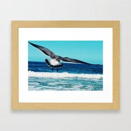 Seagull Silver Beach Lavallette Framed Art Print
