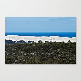 Bush Sand Dune Ocean Coastal Landscape, De Hoop South Africa Canvas Print