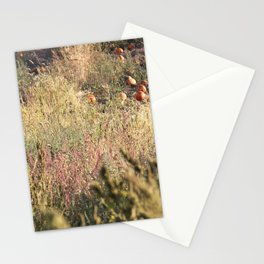 In The Field Stationery Cards