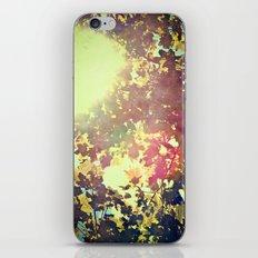 I Wanna Be Adored iPhone & iPod Skin