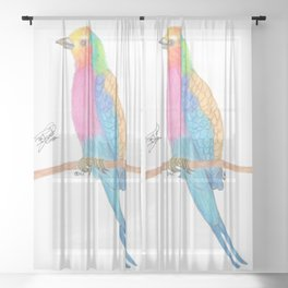 Lilac-breasted roller Sheer Curtain