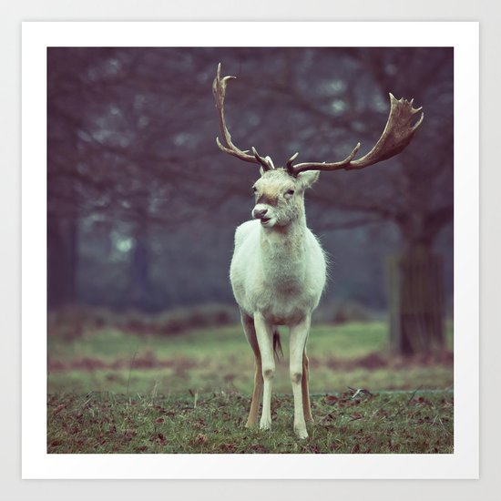 White deer needs your love Art Print