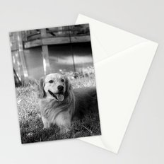 Buddy Stationery Cards