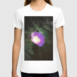 glowing old fashioned rose elegance T-shirt
